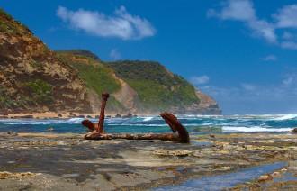 Inspirations_wreck_beach_anchor