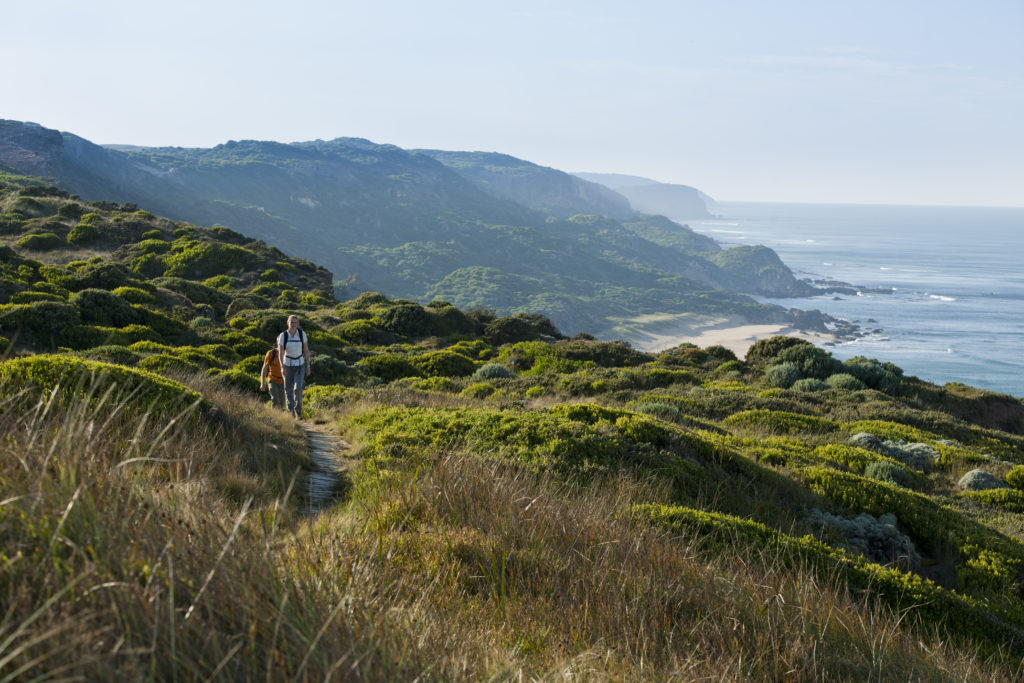 Great Ocean Walk Tours
